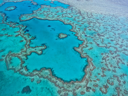 Gran Barrera de Coral - Vista aérea - Whitsundays, Queensland, Australia