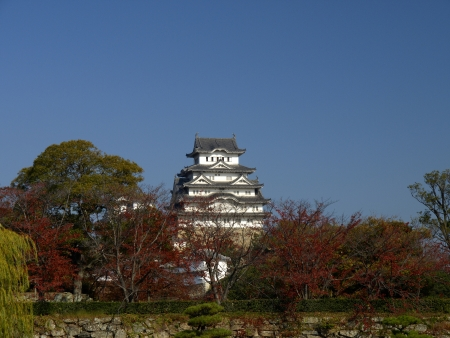 prototypical: Himeji Castle in sunny day of autumn