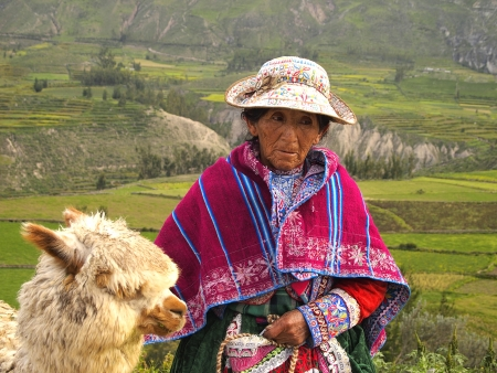 quechua: Old Incan Peruvian woman and her Alpaca