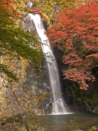 quasi: Autumn at Minoh waterfall in Osaka, Japan Stock Photo