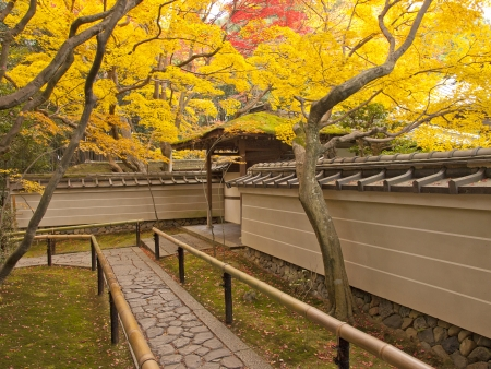 Autumn season in late november at the entrance of Kotoin Temple in Kyoto, Japan photo