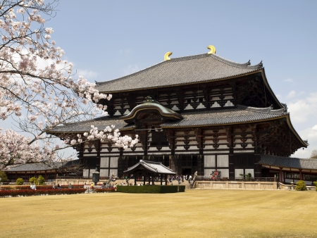 buddhist structures: Main Hall of Todaiji Temple in Nara, Japan during Cherry Blossom season  Editorial