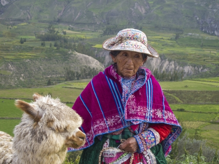 quechua indian: AREQUIPA, PERU - MAR 12  Unidentified Quechua indian woman with her Alpaca on Mar 12, 2011 in Colca canyon, Arequipa, Peru  Colca canyon is home to the Andean Condor