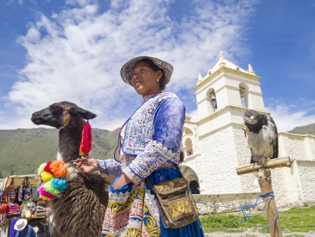 AREQUIPA, PERU - MAR 12  Unidentified Quechua indian woman with her Alpaca and Hawk in front of the Church on Mar 12, 2011 in Colca canyon, Arequipa, Peru  Colca canyon is home to the Andean Condor