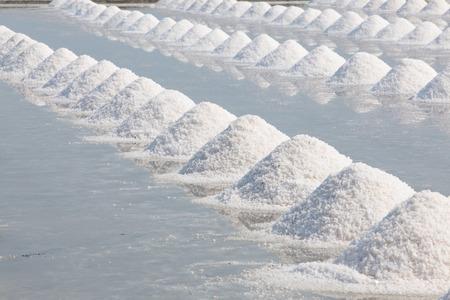 factory farm: Heap of sea salt in salt farm ready for harvest,  Thailand.