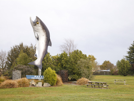 newzealand: CANTERBURY, NEWZEALAND -MAY 26: The Big Fibreglass Salmon statue of Rakaia on May 26, 2012 in Canterbury, NZ. The river from which the Rakaia town takes its name is known for its salmon fishing. Editorial