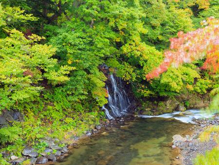 designated: Fudo waterfall at Mount Nakano-Momiji, Kuroishi city, Aomori prefecture, Tohoku region, Japan. Mt.Nakano Momijiyama is designated as one of the 100 Autumn leaves spots in Japan