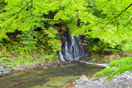 Fudo waterfall at Mount Nakano-Momiji, Kuroishi city, Aomori prefecture, Tohoku region, Japan.