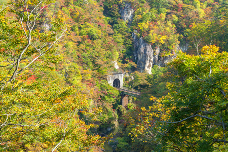 forest railroad: Train tunnel in autumn at Naruko Gorge Narukokyo, Miyagi prefecture, Tohoku region, Japan. Naruko Gorge is one of the most popular autumn color spots in Tohoku Region.