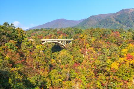 Ofukazawa Bridge over Naruko Gorge Narukokyo in autumn, Miyagi prefecture, Tohoku region, Japan. Naruko Gorge is one of the most popular autumn color spots in Tohoku Region.