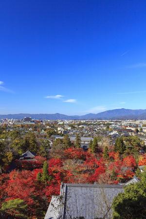 Vista aerea nel fogliame di autunno della città di Kyoto, Giappone. Archivio Fotografico - 58029831