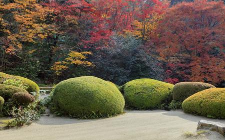 karesansui: Japanese garden in autumn, Kyoto, Japan. Stock Photo