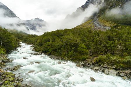 ka: Hollyford river valley (Whakatipu Ka Tuka in Maori) on the way to Milford Sound, Te Anau-Milford Sound Highway, Fiordland national park, South Island, New Zealand.