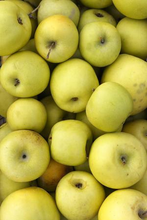 Fresh Green Apples in fruits market, Turkey. Stock Photo