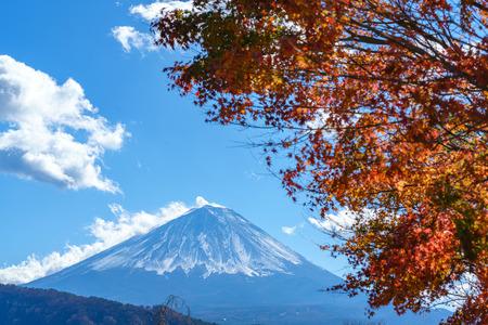 Colorful autumn foliage of Japanese Maple tree leaves with Mt. Fuji or Mount Fujiyama of Fujisan mountain as background. (Selective focus on Mt Fuji)