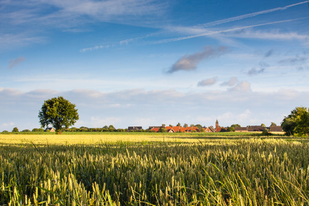 economizing: Field in front of village