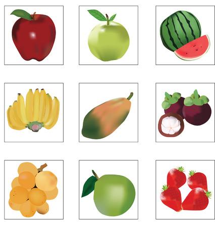 mix fruit: mix fruit Illustration