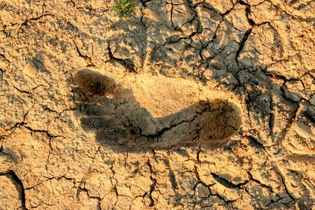 Footprints of people on dry, cracked ground, drought Stock Photo