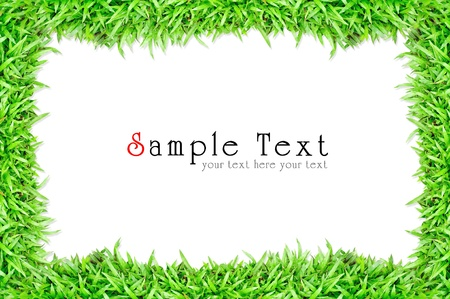 Grass frame in white background Stock Photo - 9879075