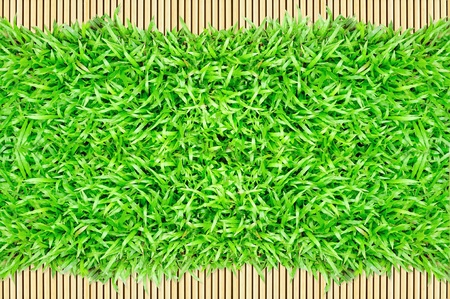 grass frame on bamboo background  Stock Photo - 9879048