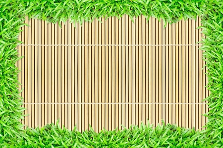 grass frame on bamboo background, texture background Stock Photo - 9879088