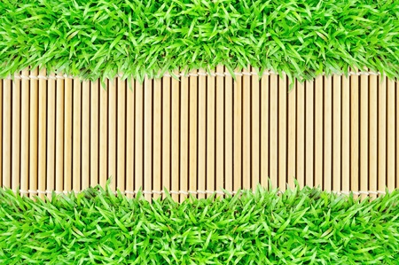grass frame on bamboo background Stock Photo - 10021127