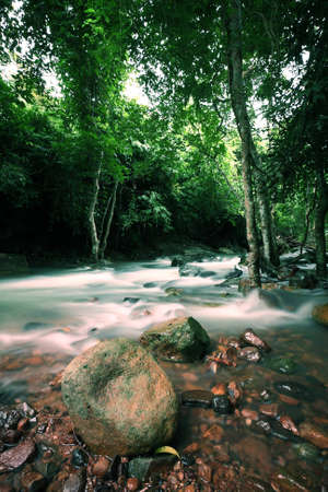 The stream in Jad Kod forest, Saraburi province, Thailand. Stock Photo - 7780651