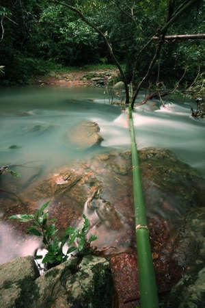 The stream in Jad Kod forest, Saraburi province, Thailand. photo