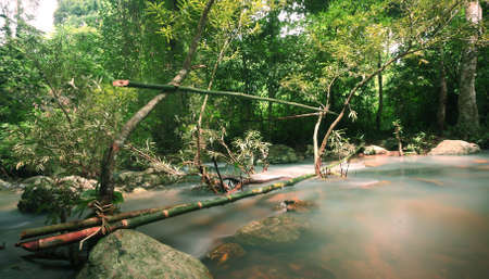 The stream in Jad Kod forest, Saraburi province, Thailand. photo