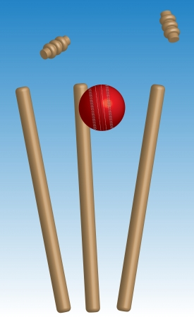 wicket: Cricket Ball hitting wickets and bails  Illustration