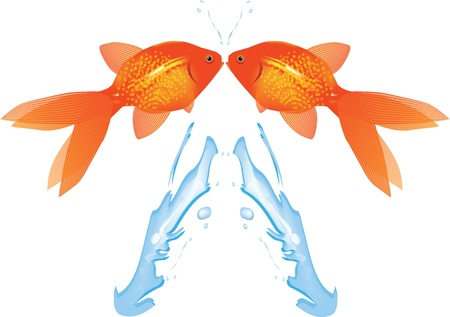 gold fish bowl: Goldfish Leaping from water