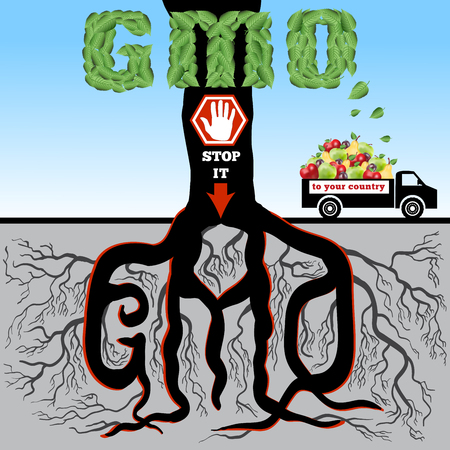 genetically: GMO. The poster (advertizing) devoted to a problem of genetically modified products.