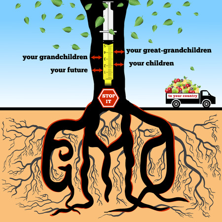 advertizing: GMO. The poster (advertizing) devoted to a problem of genetically modified products.