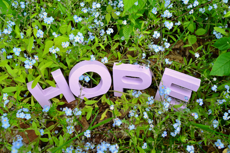 Hand-painted (light violet) HOPE word surrounded by forget-me-not flowers in a garden setting. Concept image for finding solutions for memory loss.