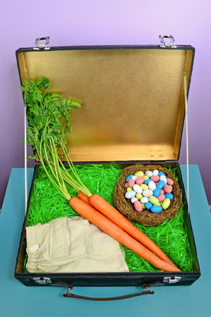 Fun concept image for what the Easter Bunny packs when going on vacation. Interior of craft suitcase box was spray painted in metallic gold.