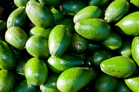 A great collection of fresh Avocardos shinning in the night.