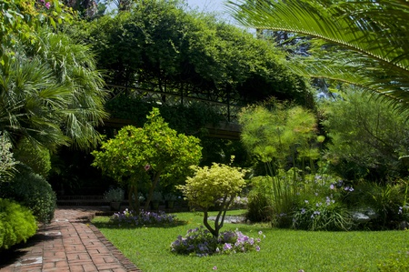 This is the lower section of the Gibraltar Botanical Gardens showing the walkway that is suspended above the garden. photo