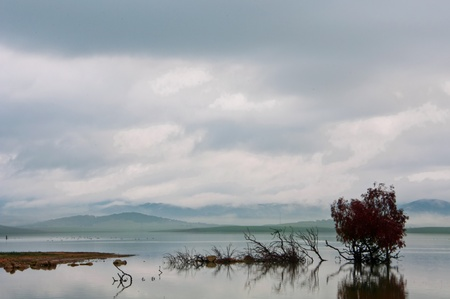 submerge: An Autumn landscape shot at a lake in Andalucia Spain. Stock Photo