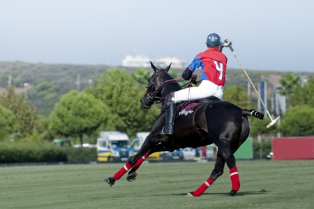 A Polo pony and Rider  No 4  on the turn photo