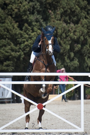 obstacle course: A show jumping horse and rider jumping a fence  Stock Photo
