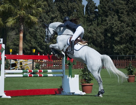 chestnut male: A show jumping horse and rider jumping a fence  Stock Photo