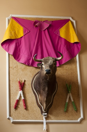 breen: Una testa di toro in mostra in un ristorante andaluso con altri oggetti usati nella corrida. Archivio Fotografico