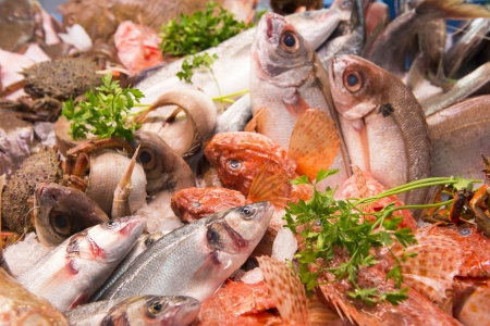 sparus: A selection of fish at a fish market in southern Spain. Stock Photo