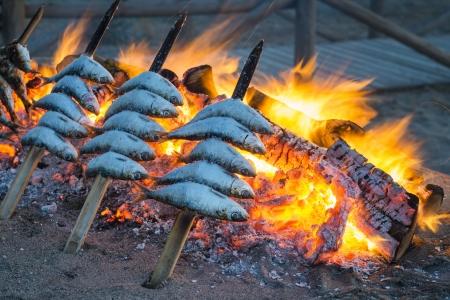 sardinas: Sardinas cocinar en una barbacoa abierta en una costumbre tradicional española.