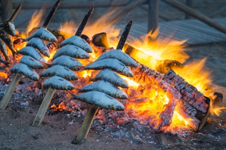 coal fire: Sardines cooking on an open BBQ in a traditional Spanish custom.