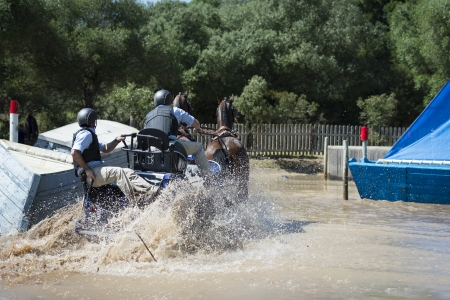 navigate: An image of from a Horse Driving competition where the riders navigate an obsticle course
