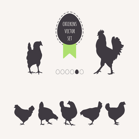 egg laying: Set of chickens. Silhouettes of laying hens, rooster. Frame egg with green ribbon.