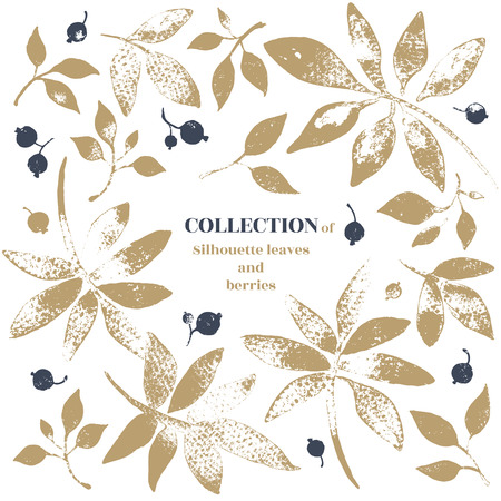 ollection of leaves and berries. Silhouette shape on white background.
