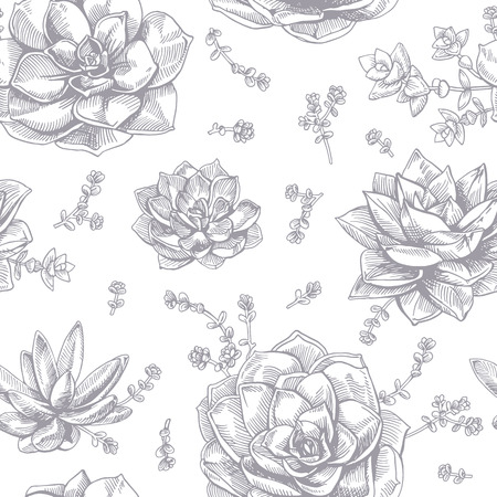 succulent: ink succulents. Seamless pattern. graphic succulents on white background.