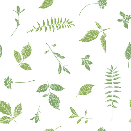 Hand drawn herbs. Seamless floral background.